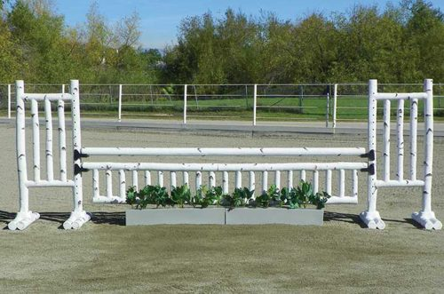 5 foot birch jump standards and flower boxes