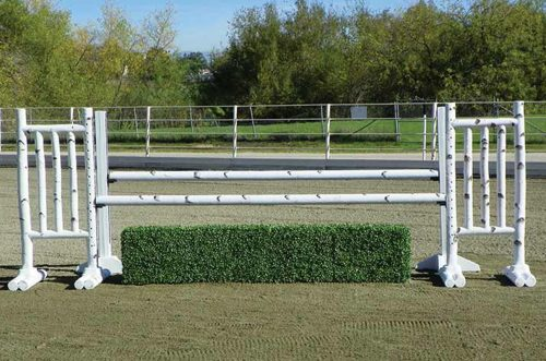 5 foot birch jump standards complete jump with box hedge