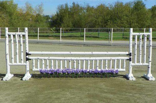 5 foot birch jump standards with flower strip