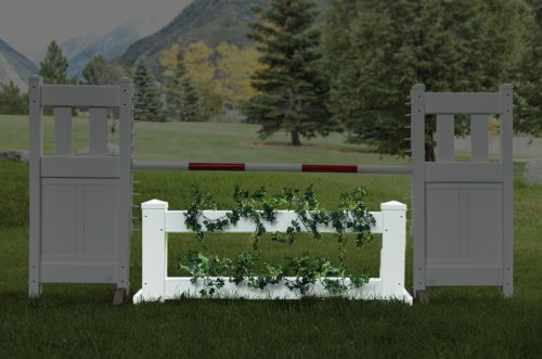mini brush box with green foliage
