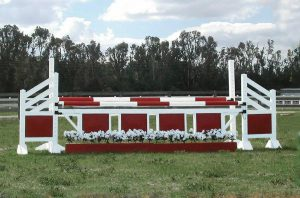 two tone oxer complete jump asa45