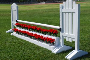 Flower Stairs Set by Burlingham Sports