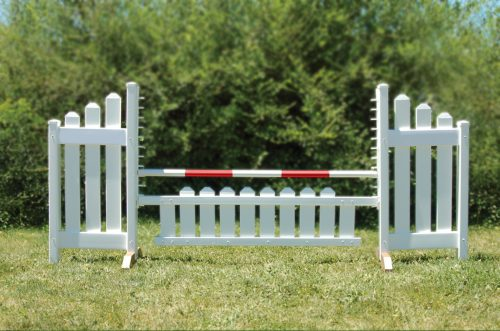 slant picket jump set and red soft pole