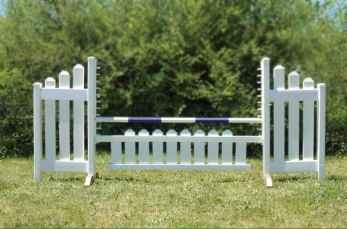 slant picket jump set and blue soft pole