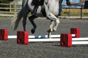 quick cavaletti training obstacle and horse