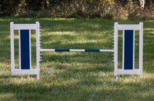 color panel jump set blue standards