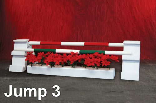 graphic panel jump package holiday kid jump
