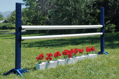red flowers with blue schooling standards with white poles complete jump
