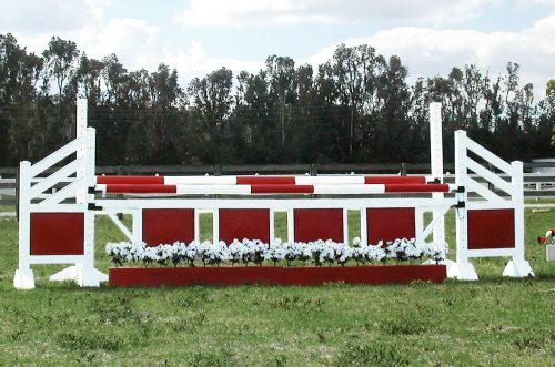white flowers and flower boxes with complete jump