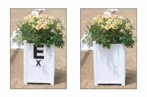 Arena Flower Box Single