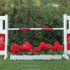 graphic panel jump with flower box and star pony graphic panels