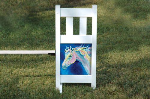 kid jump graphic dream pony