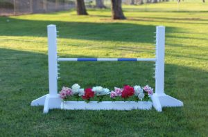 schooling kid jump with flower box