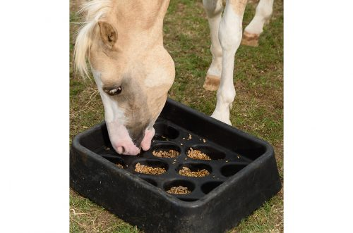 horse eating out of a gradual feeder