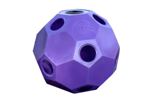 hay-ball-feeder-in-purple