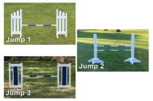 simple trainer jump course. skinny picket, kid schooling, color panel