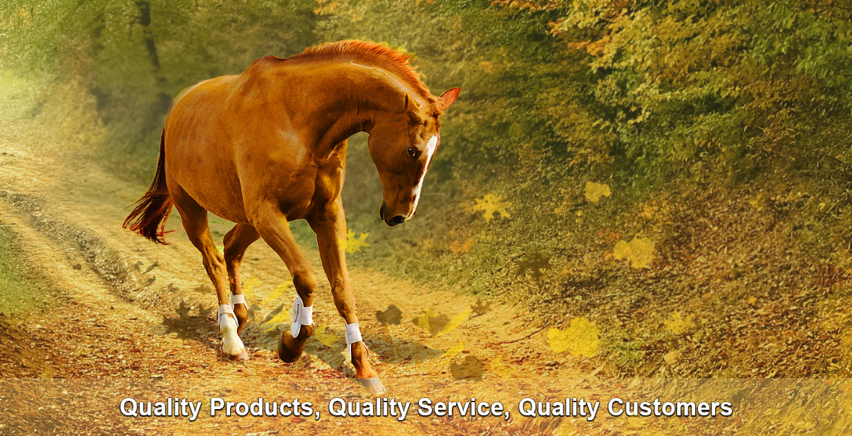 arena supplies quality product quality service quality customers